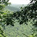 small_bluff-view-2